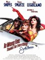 Affiche de To Wong Foo Thanks for Everything, Julie Newmar