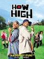 Affiche de How High
