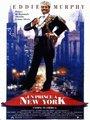 Affiche de Un prince à New-York