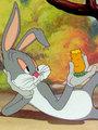 Affiche de A Wild Hare