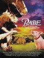 Affiche de Babe, le cochon devenu berger