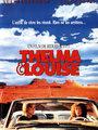 Affiche de Thelma et louise