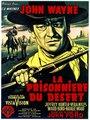 Affiche de La prisonnière du désert