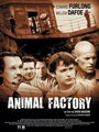 Affiche de Animal Factory