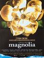 Affiche de Magnolia