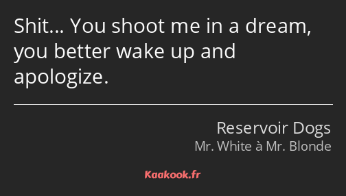 Shit… You shoot me in a dream, you better wake up and apologize.