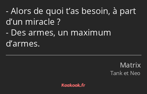 Alors de quoi t'as besoin, à part d'un miracle ? Des armes, un maximum d'armes.