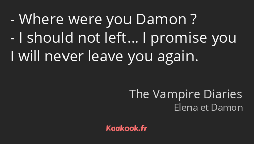 Where were you Damon ? I should not left… I promise you I will never leave you again.