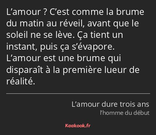 Citation L Amour C Est Comme La Brume Du Matin Au
