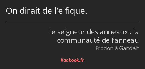 Citation « On dirait de l'elfique. »   Kaakook