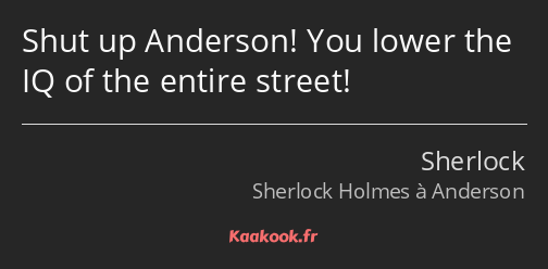 Shut up Anderson! You lower the IQ of the entire street!