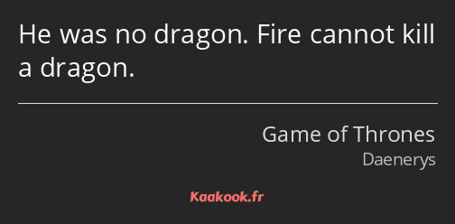 He was no dragon. Fire cannot kill a dragon.