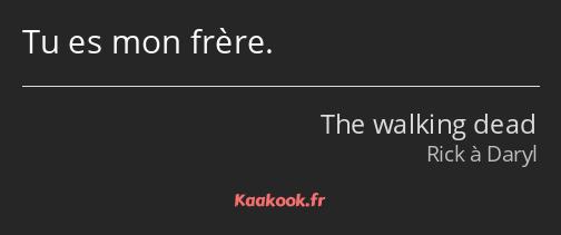 Citation Tu Es Mon Frère Kaakook
