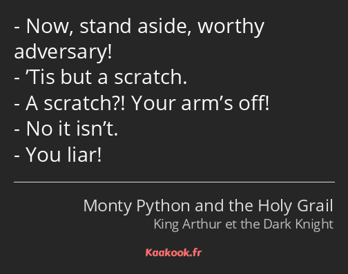 Now, stand aside, worthy adversary! 'Tis but a scratch. A scratch?! Your arm's off! No it isn't…