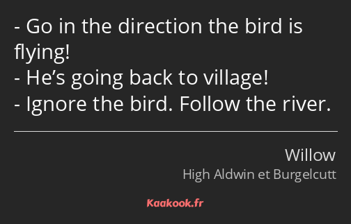 Go in the direction the bird is flying! He's going back to village! Ignore the bird. Follow the…