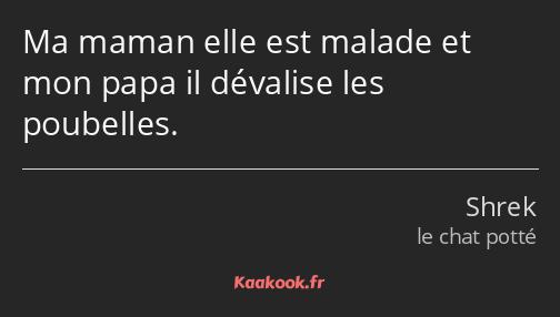 Citation Ma Maman Elle Est Malade Et Mon Papa Il Kaakook