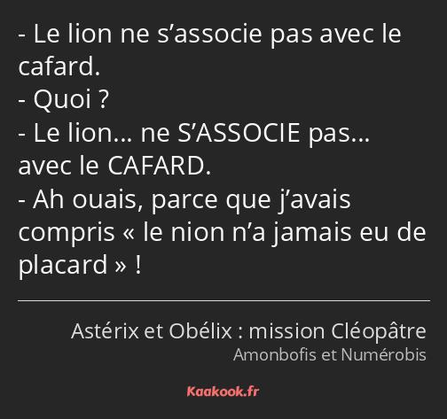 Citation Le Lion Ne S Associe Pas Avec Le Cafard Quoi